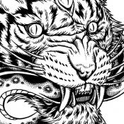 tiger_snake_web